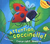 Attention coccinelle !